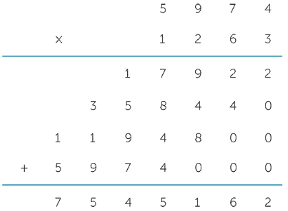 TIMES MODULE M9 - Multiplication of Whole Numbers
